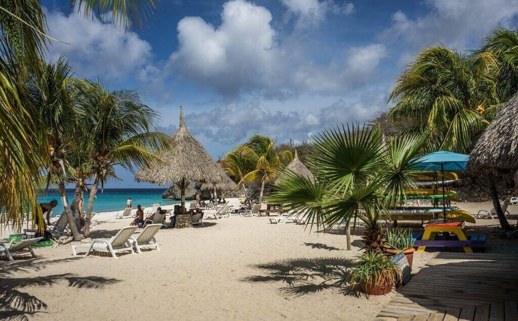 Strand met palmbomen en parasols