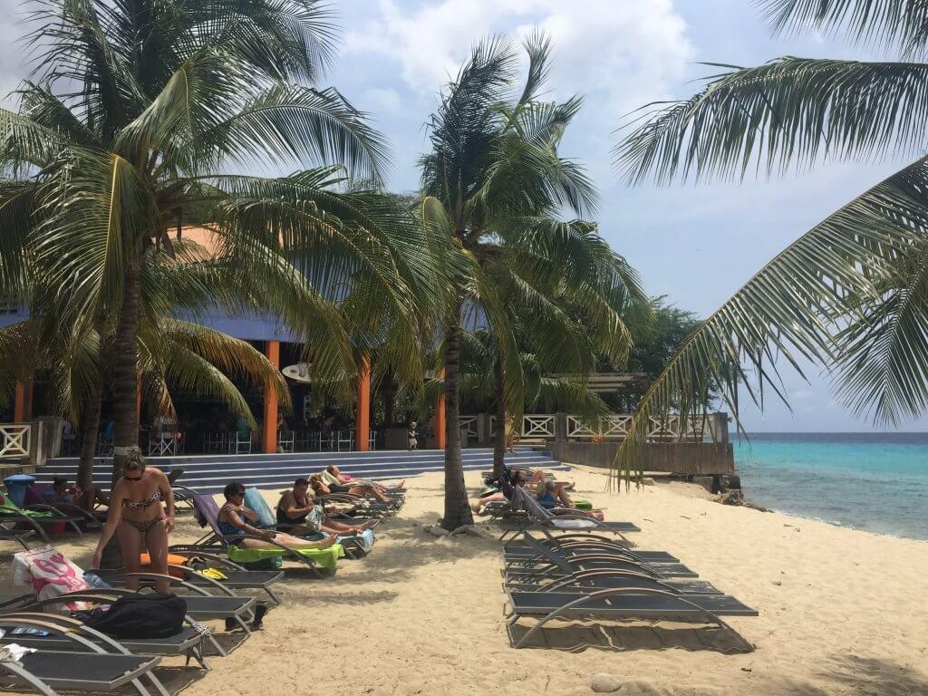 Kokomo Beach Curacao palmbomen