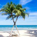 Vakantie Nederlandse Antillen